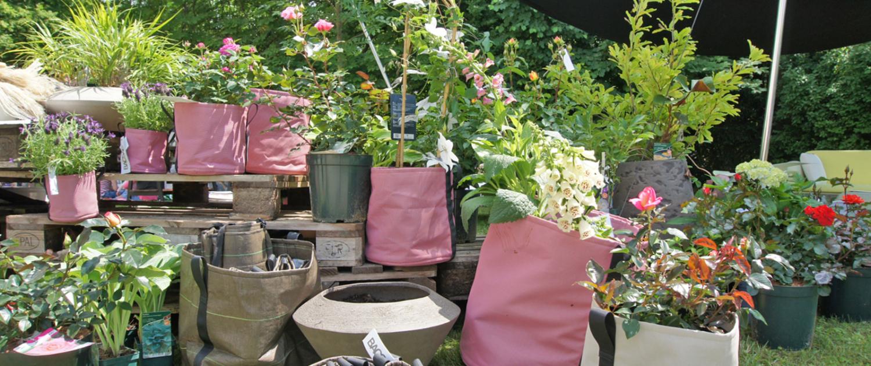 Presse – Salon Jardin